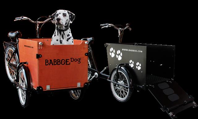 Alpine Bike Montabaur Babboe Lastenfahrrad DOG